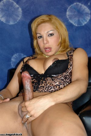 Marie-barbara ladyboy sex dating Chicago Heights, IL